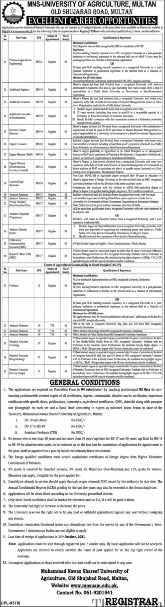 Latest Jobs 2021 At MNS University of Agriculture Multan